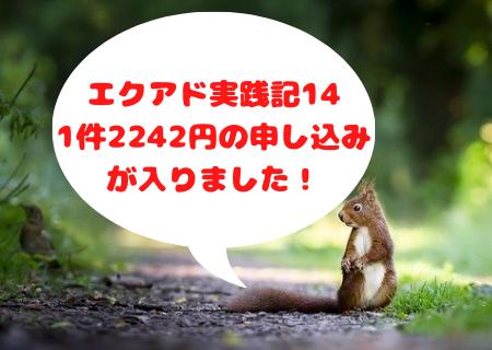 エクアド実践記⑭17週目。1件2242円の申し込みが入りました!