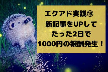 エクアド実践記⑱21週目。新記事をUPして2日目で1000円の報酬発生!